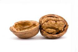 Поделки из скорлупы грецкого ореха1