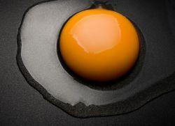 яичные желтки для похудении