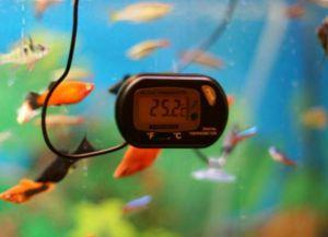 Аксессуары для аквариума5