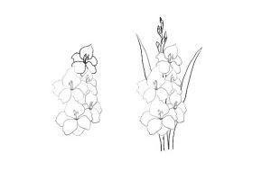 как нарисовать цветок поэтапно 12