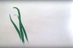 как нарисовать цветок поэтапно 14
