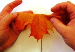 Осенний букет своими руками для детского сада 3