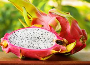 съедобные плоды кактуса 4