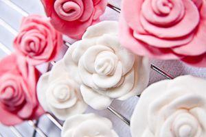 Розы из мастики мастер-класс для начинающих 6