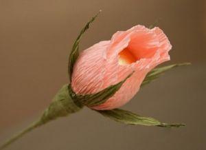 цветы из конфет своими руками1