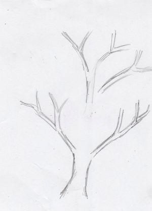 Как нарисовать дерево 10