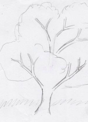 Как нарисовать дерево 11