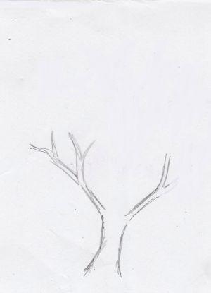 Как нарисовать дерево 9