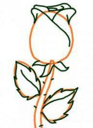 Как нарисовать поэтапно розу 13