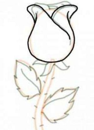 Как нарисовать поэтапно розу 14