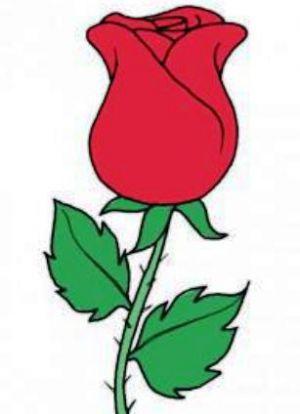 Как нарисовать поэтапно розу 9