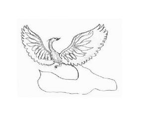как нарисовать птицу 16