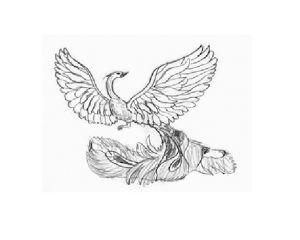 как нарисовать птицу 18