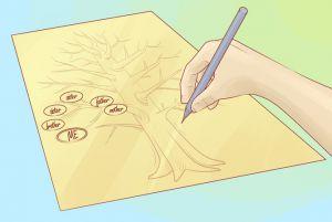 как нарисовать семейное дерево 3