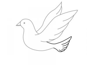 Как поэтапно нарисовать карандашом голубя детям 10