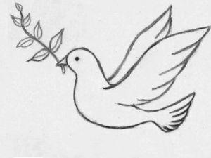 Как поэтапно нарисовать карандашом голубя детям 12