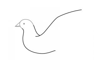 Как поэтапно нарисовать карандашом голубя детям 8
