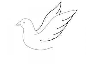 Как поэтапно нарисовать карандашом голубя детям 9