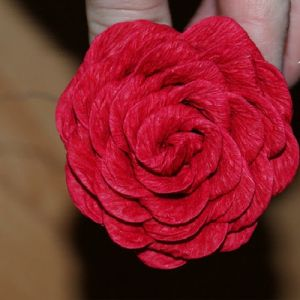 Розы из гофрированной бумаги15