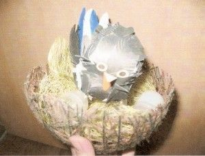 поделки ко дню птиц 4