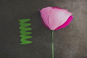 Большие цветы из гофрированной бумаги11