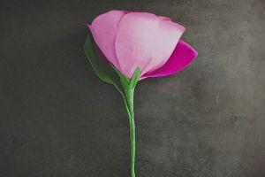 Большие цветы из гофрированной бумаги13