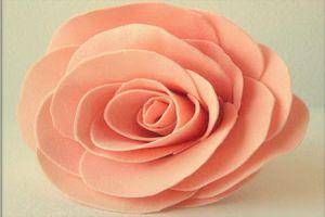 Цветы из фоамирана - мастер-класс8