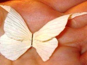 Бабочки из гофрированной бумаги7