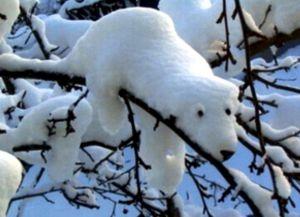 Зимние забавы для детей11