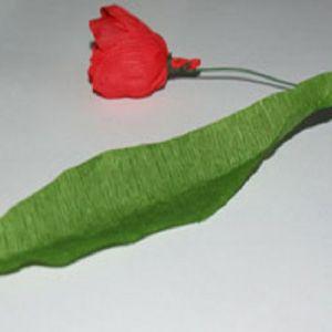 тюльпаны из гофрированной бумаги 8