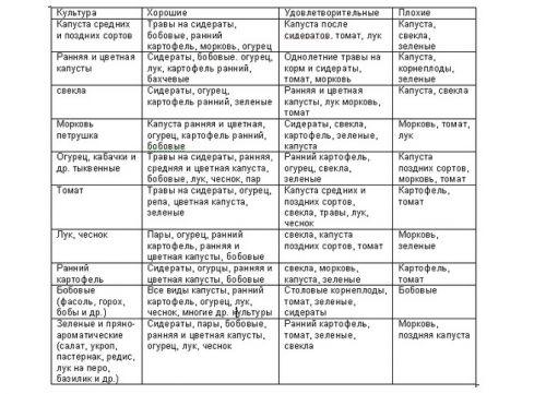 В первой колонке таблицы