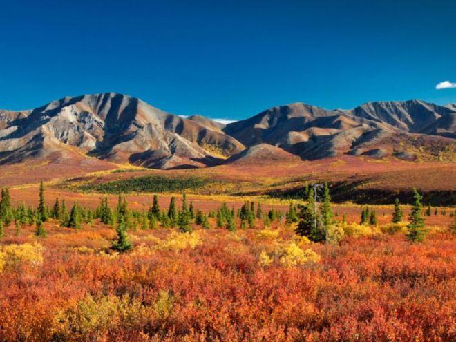 Денали – национальный парк и заповедник Аляски, США