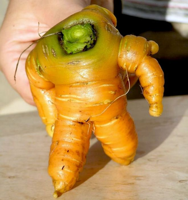 Морковный космонавт