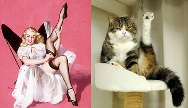 Кот и нога
