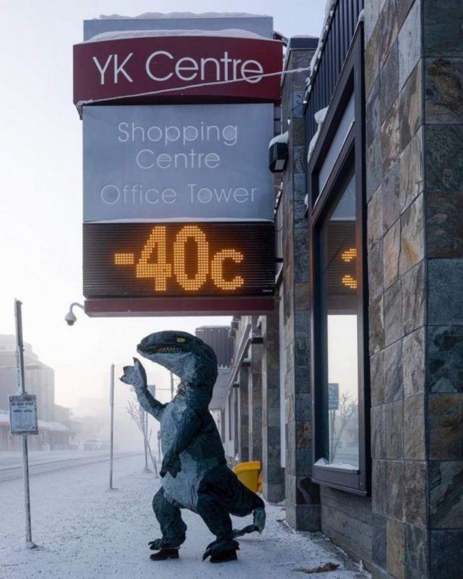 Тем временем в Канаде: 20 фото, глядя на которые вы раскроете рот