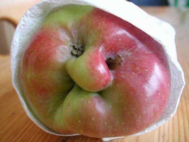 Какое яблочко-милашка
