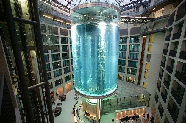 Аквариум-лифт