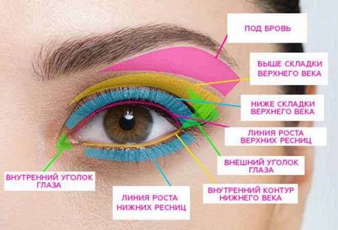 Части глаза