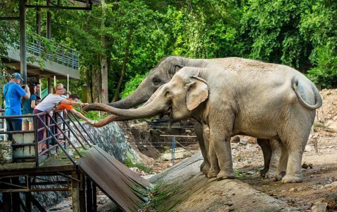 5 уникальнейших зоопарков мира