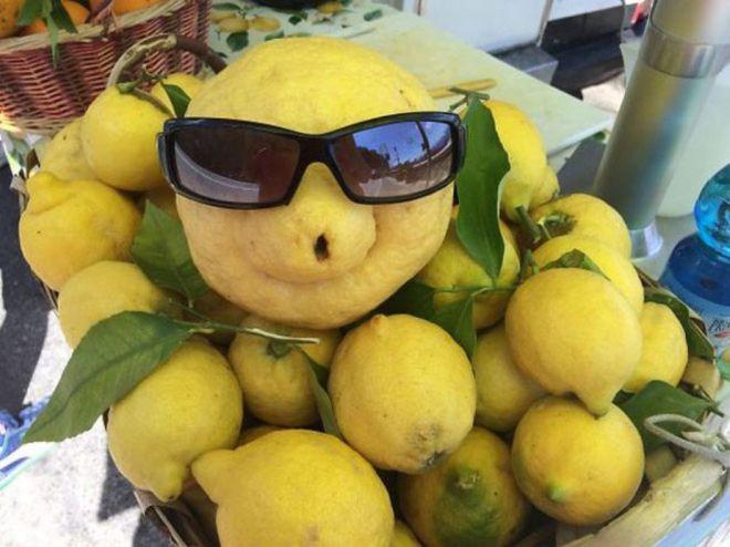 Это самый счастливый лимон на свете
