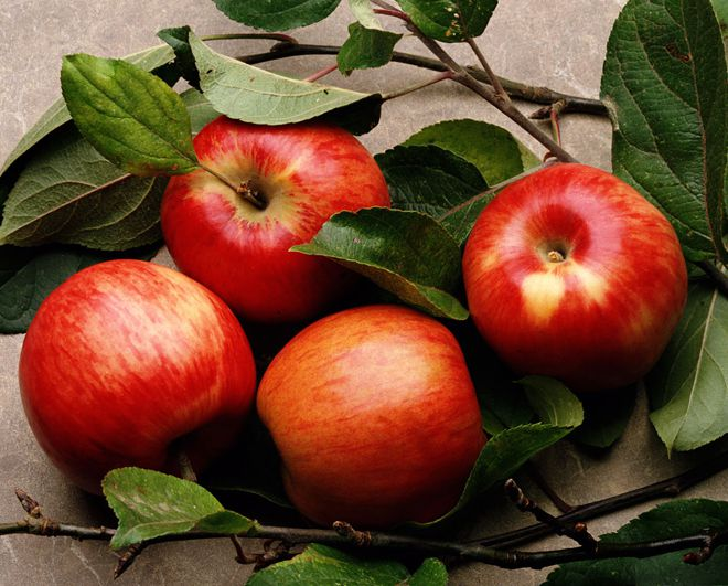 яблоки 18 штук