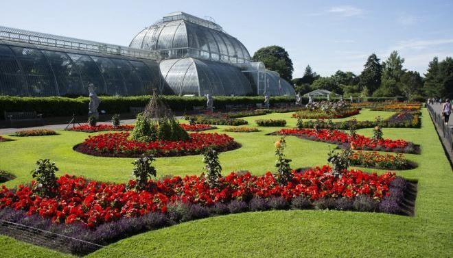 5 необычных и ярких ботанических садов, привлекающих толпы туристов