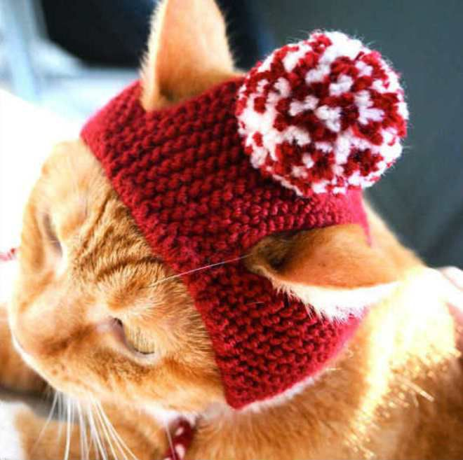 Связать шапку котика