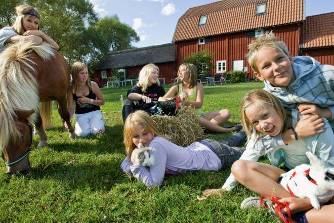 5 интересных фактов из жизни шведов