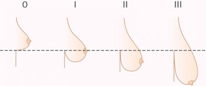 Красивая висячая грудь