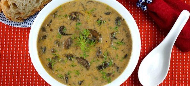 Грибной суп из замороженных грибов в мультиварке