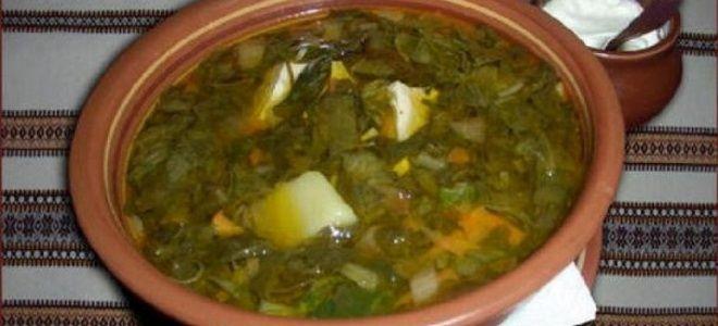 зеленый борщ вегетарианский