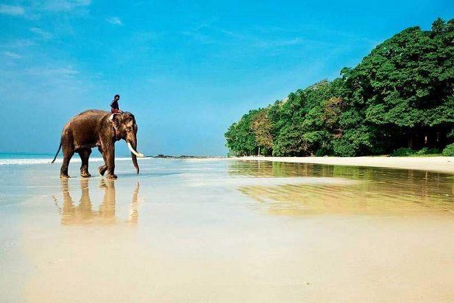 Когда лучше ехать в Индию?