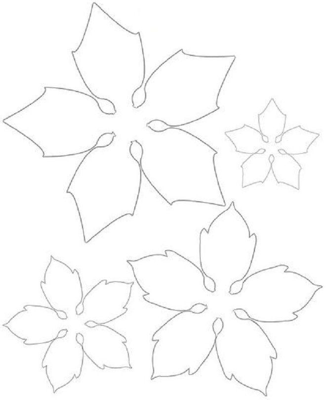 шаблон пуансетии из фоамирана