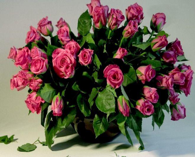 можно ли вырастить розу из букета